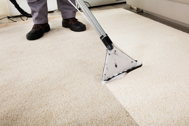 Is It Really Your Way to Clean the House Carpet?